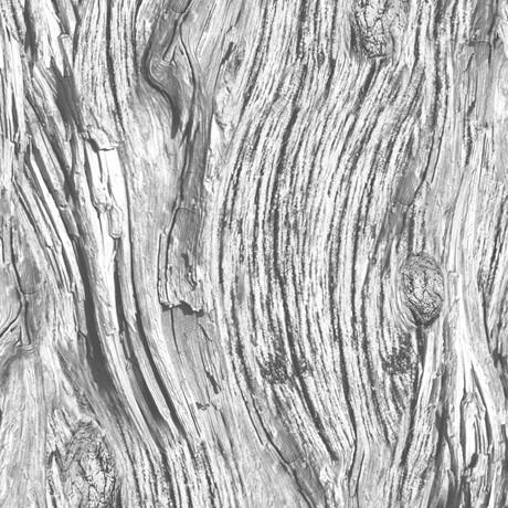 Holzmaserung Stoff Hellgrau Open Air Driftwood
