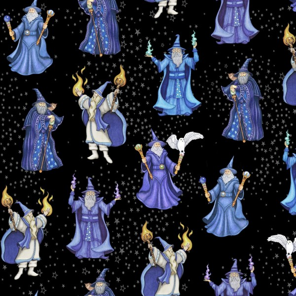Zauberer Stoff Spellbound Wizard