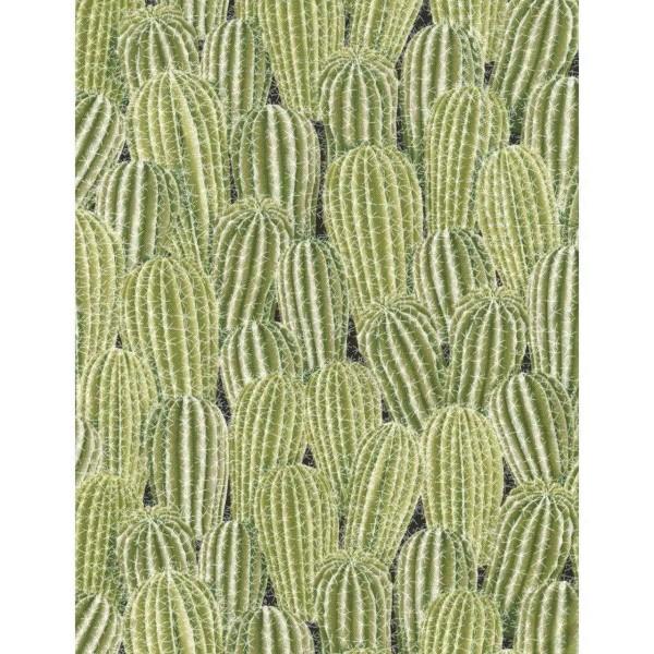 Cactus Green Kaktus