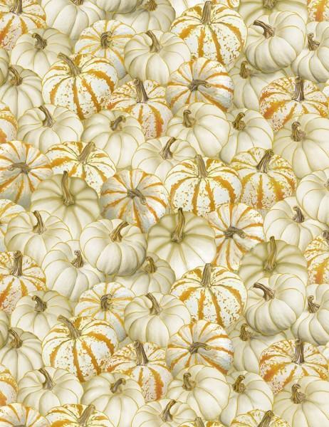 Kürbis Stoff Pumpkins Cream