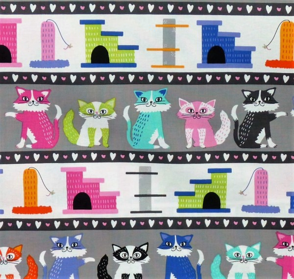 Kitten Kaboodle Cats Katzen