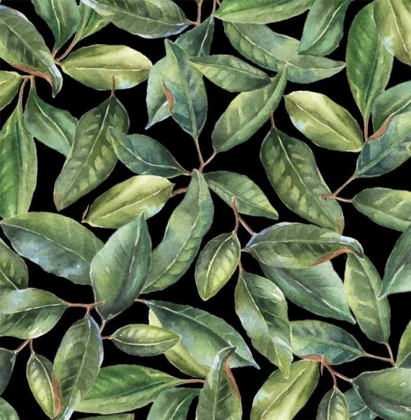 Magnolia Blätter Stoff