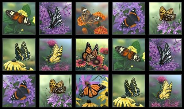 Schmetterlinge Stoff Panel Butterfly Meadow Block Black