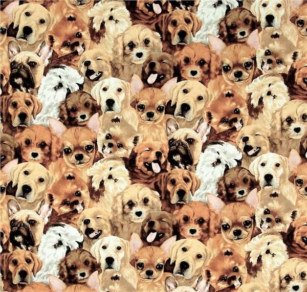 Hunde Welpen Stoff Pet Familiy Dogs