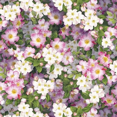 Blumen Stoff Packed Floral Hummingbird Garden
