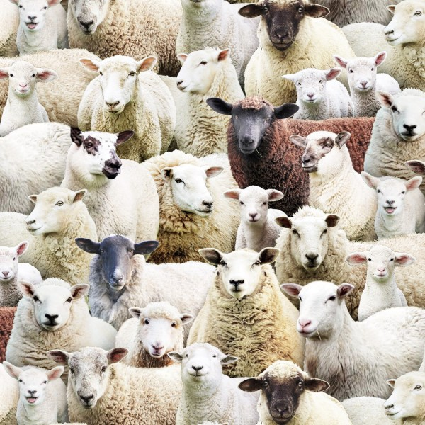 Schafe Stoff Multi Packed Sheeps