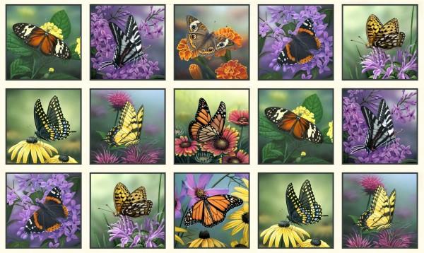 Schmetterlinge Stoff Panel Butterfly Meadow Block Cream