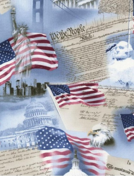 USA Stoff Declaration of Independence