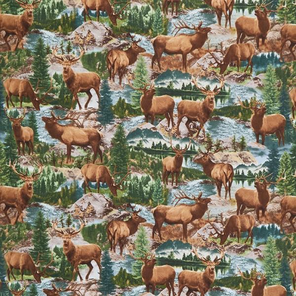 Elche Stoff Elk in Creek