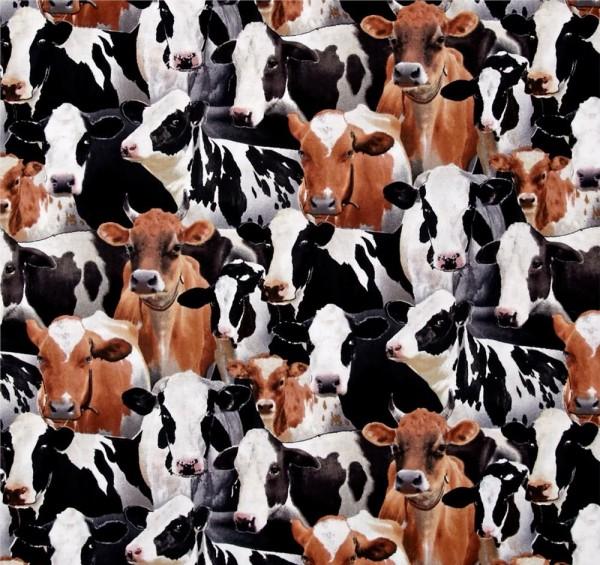 Kühe Stoff Farm Animals Cows