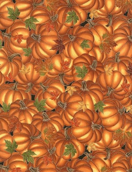 Kürbis Stoff Harvest Pumpkins