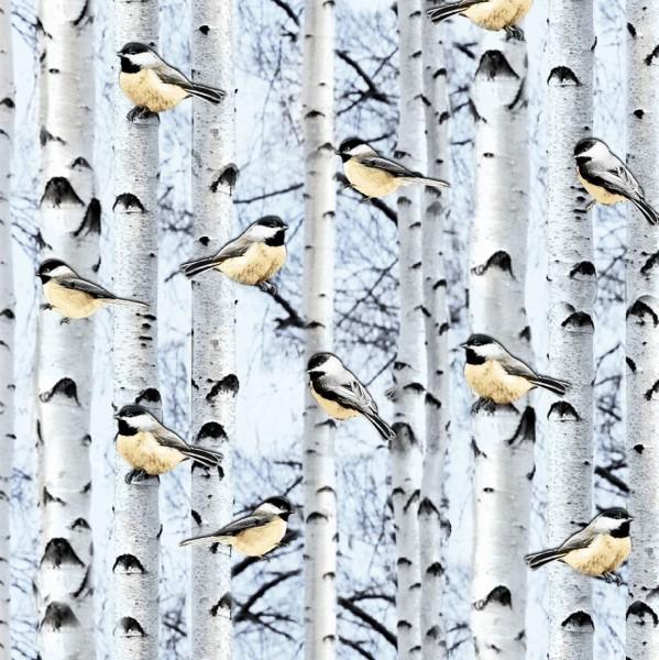 Winter Birds Vögel
