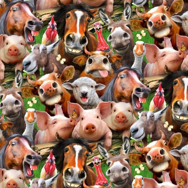 Lustige Tiere Farm Animals Selfies