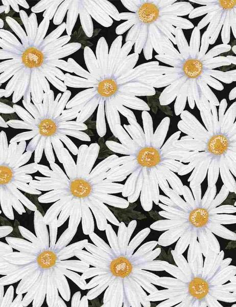 Blumen Stoff Daisies
