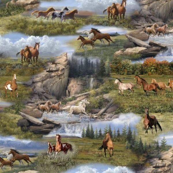 Horses Running Wild Scenic Pferde