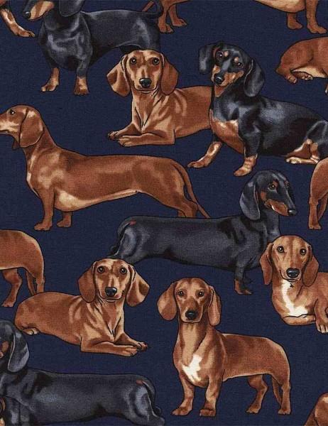 Dackel Hunde Stoff Dachshunds Dogs